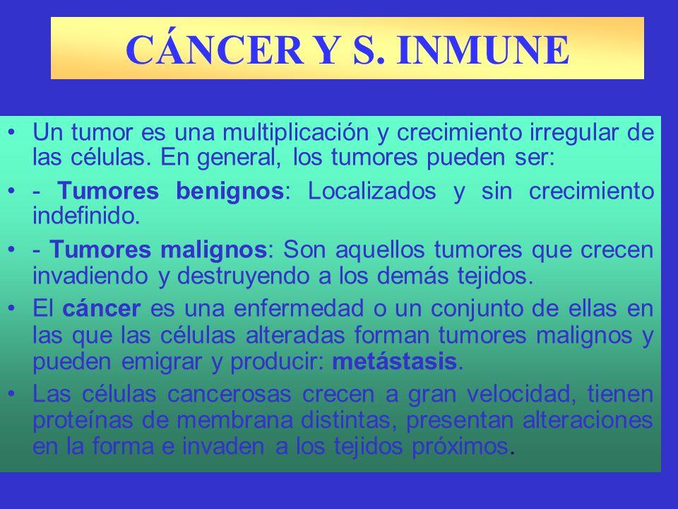 CÁNCER Y S.INMUNE Un tumor es una multiplicación y crecimiento irregular de las células.