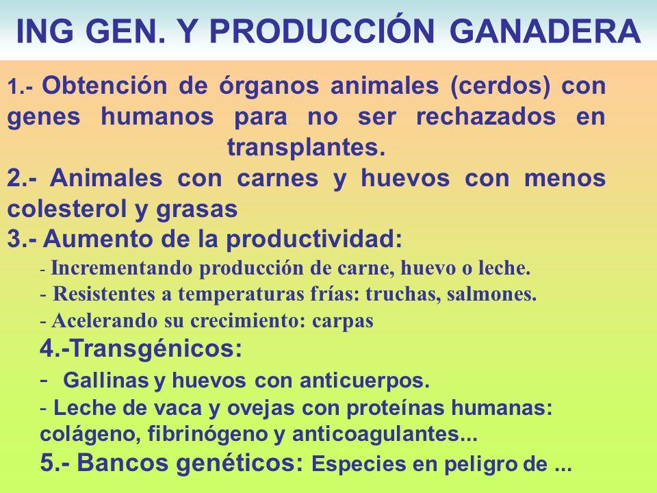 1.- Obtención de órganos animales (cerdos) con genes humanos para no ser rechazados en transplantes. 2.- Animales con carnes y huevos con menos colest