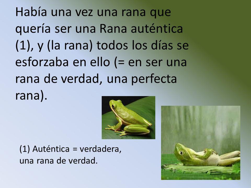 Había una vez una rana que quería ser una Rana auténtica (1), y (la rana) todos los días se esforzaba en ello (= en ser una rana de verdad, una perfec