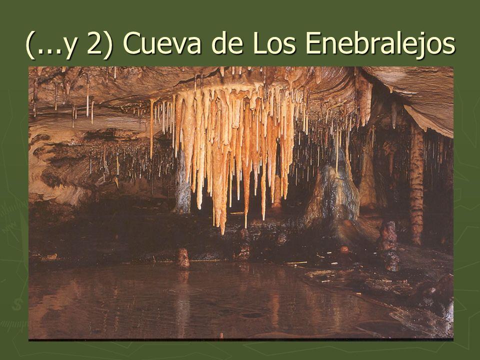 (...y 2) Cueva de Los Enebralejos