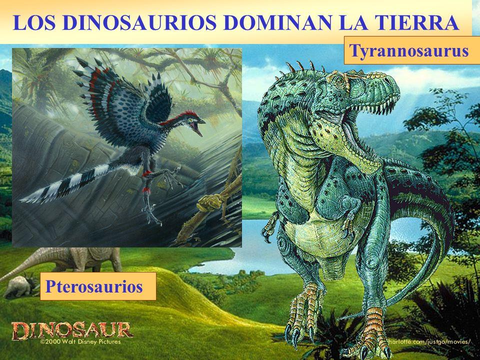 LOS DINOSAURIOS DOMINAN LA TIERRA Pterosaurios Tyrannosaurus