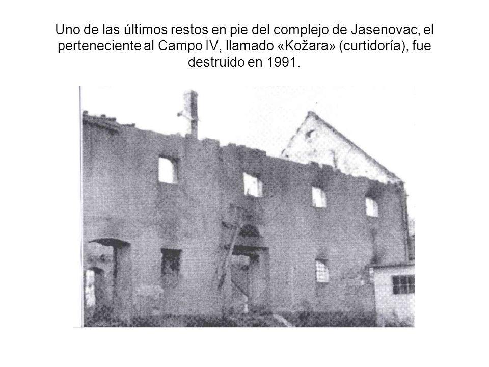 Uno de las últimos restos en pie del complejo de Jasenovac, el perteneciente al Campo IV, llamado «Kožara» (curtidoría), fue destruido en 1991.