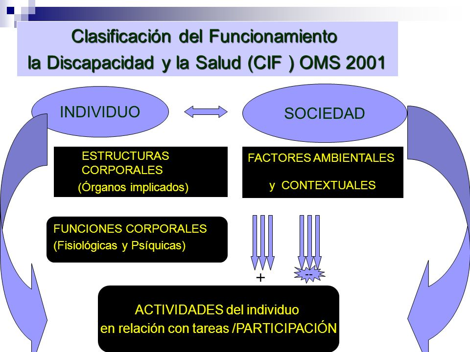 INDIVIDUO SOCIEDAD ACTIVIDADES del individuo en relación con tareas /PARTICIPACIÓN ESTRUCTURAS CORPORALES (Órganos implicados) FUNCIONES CORPORALES (F