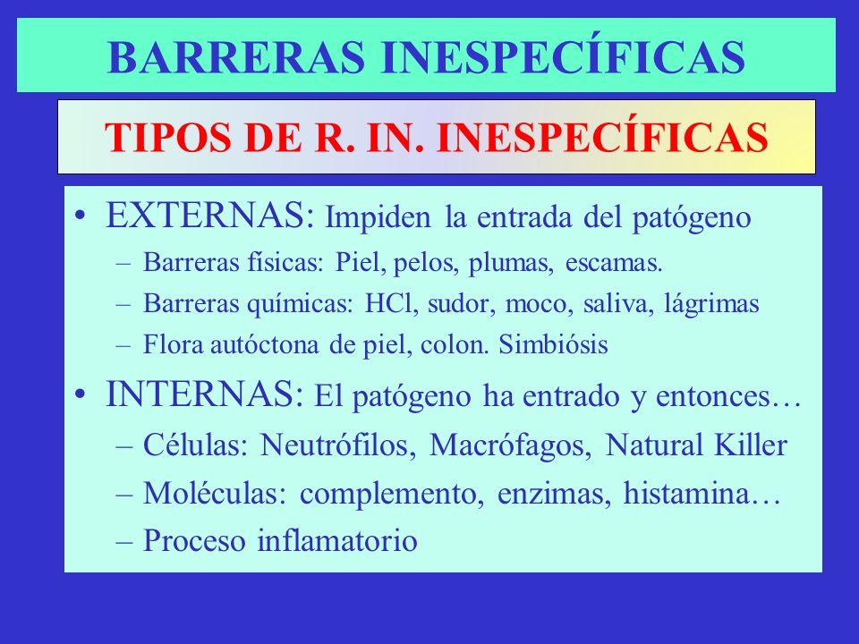 BARRERAS INESPECÍFICAS EXTERNAS: Impiden la entrada del patógeno –Barreras físicas: Piel, pelos, plumas, escamas. –Barreras químicas: HCl, sudor, moco