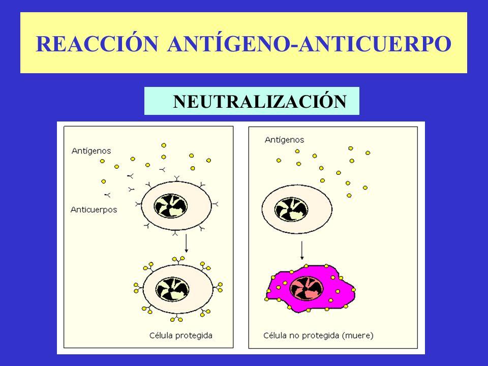 REACCIÓN ANTÍGENO-ANTICUERPO NEUTRALIZACIÓN