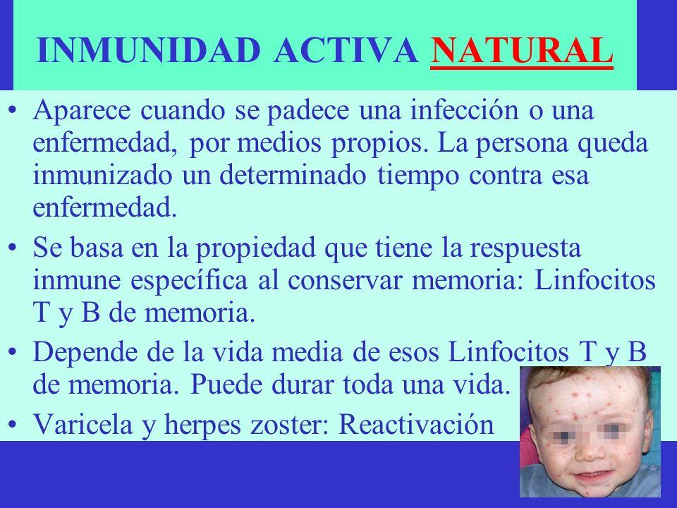 INMUNIDAD ACTIVA NATURAL Aparece cuando se padece una infección o una enfermedad, por medios propios. La persona queda inmunizado un determinado tiemp