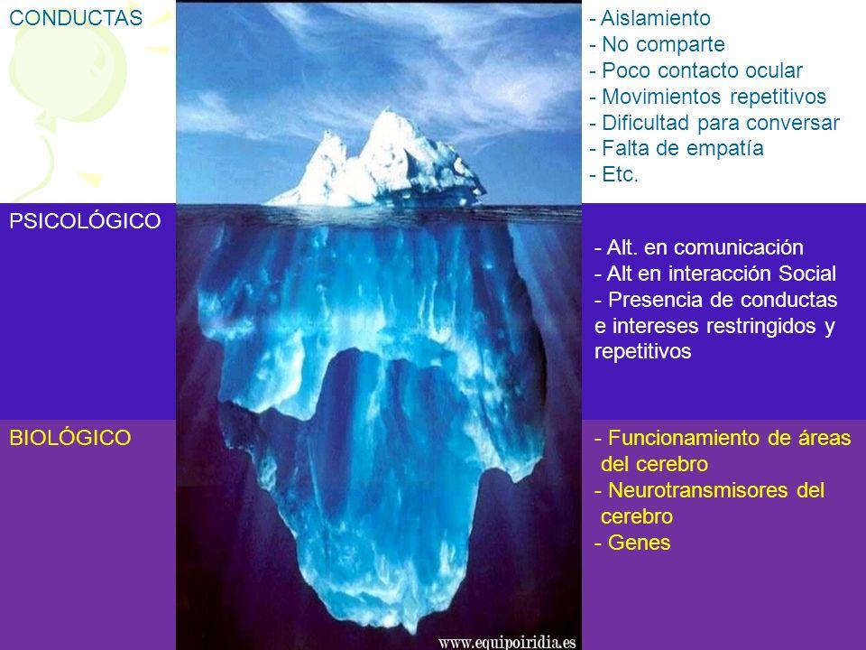PSICOLÓGICO - Alt. en comunicación - Alt en interacción Social - Presencia de conductas e intereses restringidos y repetitivos BIOLÓGICO - Funcionamie