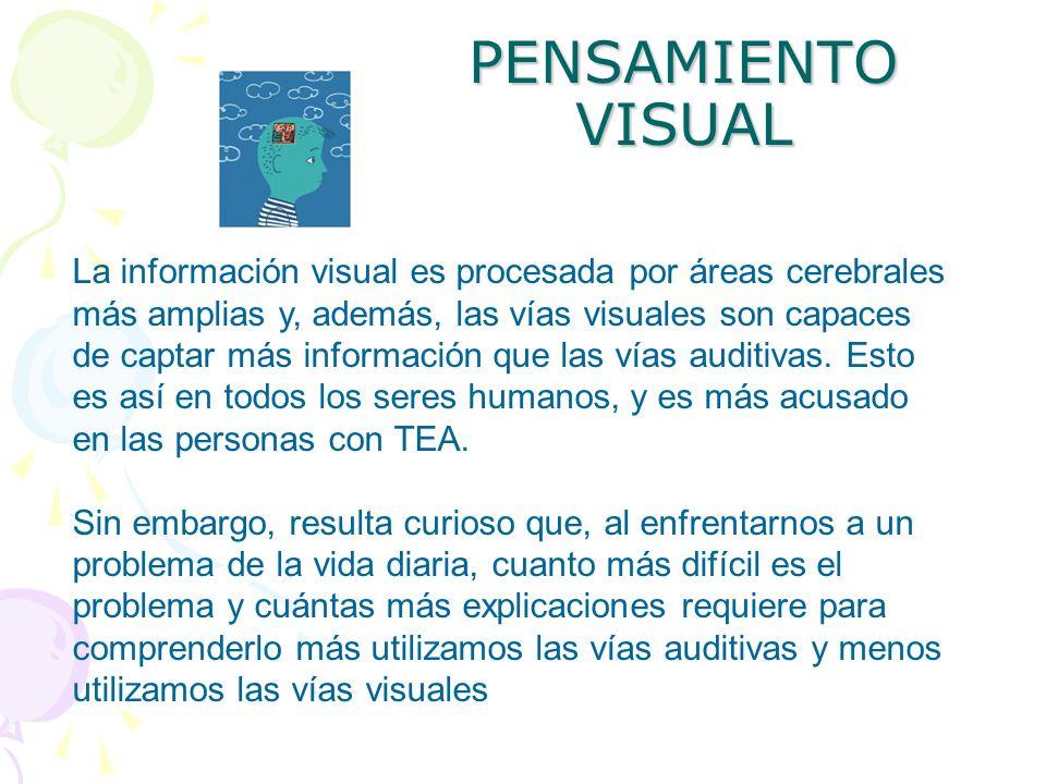 PENSAMIENTO VISUAL La información visual es procesada por áreas cerebrales más amplias y, además, las vías visuales son capaces de captar más informac