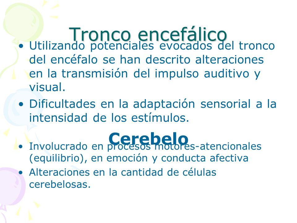 Tronco encefálico Utilizando potenciales evocados del tronco del encéfalo se han descrito alteraciones en la transmisión del impulso auditivo y visual