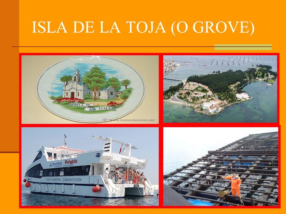 ISLA DE LA TOJA (O GROVE)