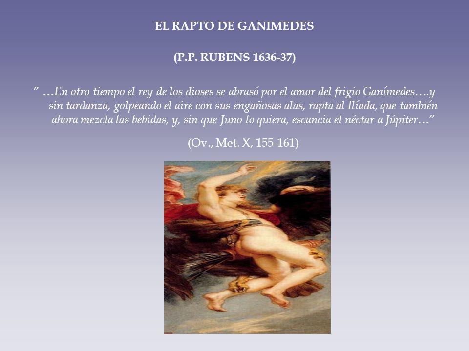 EL RAPTO DE GANIMEDES (P.P. RUBENS 1636-37) … En otro tiempo el rey de los dioses se abrasó por el amor del frigio Ganímedes….y sin tardanza, golpeand