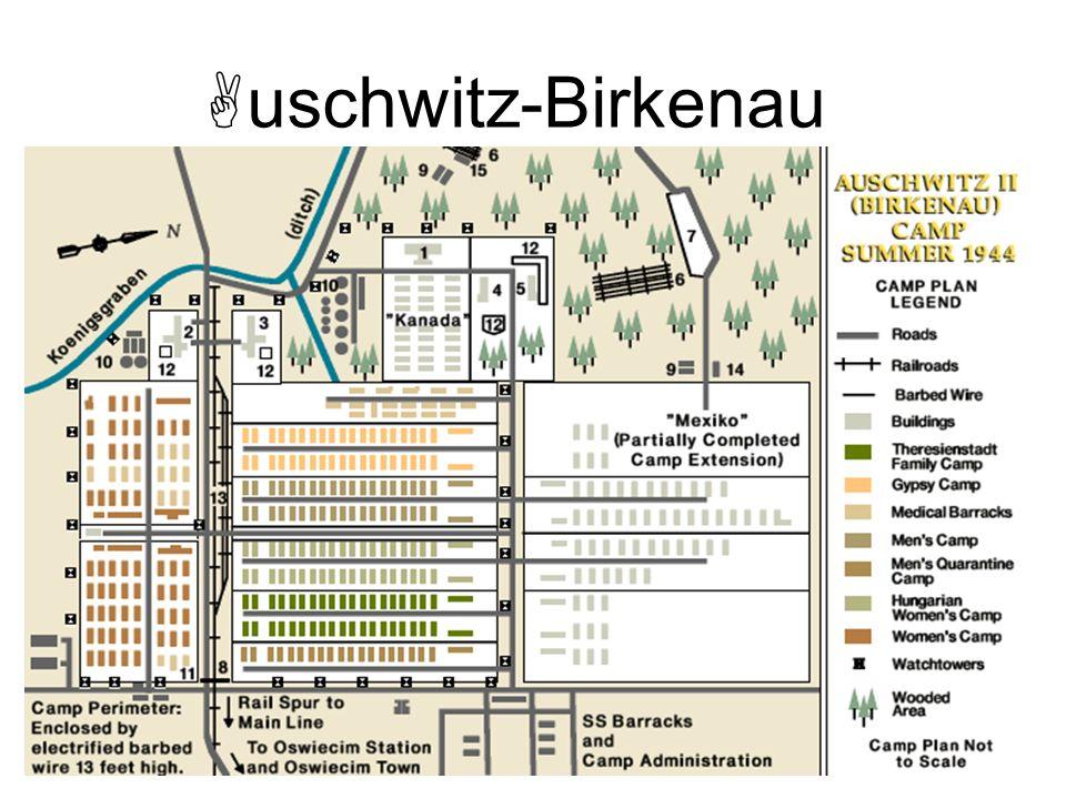 uschwitz-Birkenau Rudolf Höss, comandante del campo de Auschwitz- Birkenau, entre el Reichsführer Himmler y Max Faust, asistente del jefe de ingeniería Dürrfeld, responsable de construcción de la IG Farben, durante una visita el 17 de julio de 1942 al emplazamiento del complejo industrial de Monowitz [PMO neg.