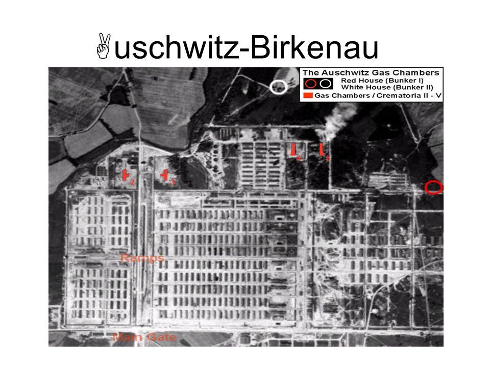 uschwitz-Birkenau Visita de Himmler a Auschwitz.
