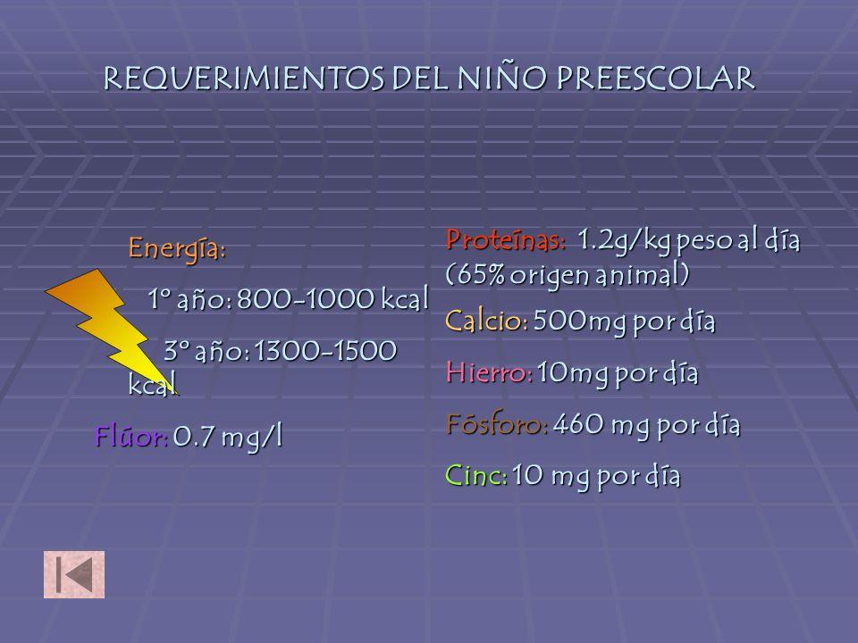 REQUERIMIENTOS DEL NIÑO ESCOLAR Energía: 2000 kcal por día 2000 kcal por día Flúor: 0.7 mg/l o bien 2mg por día Proteínas: 1 g/kg peso al día (65% ori