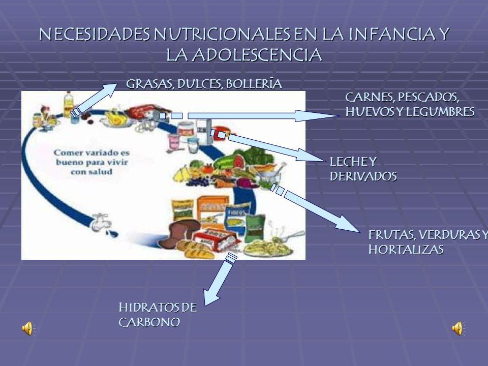 NECESIDADES NUTRICIONALES EN LA INFANCIA Y LA ADOLESCENCIA FRUTAS, VERDURAS Y HORTALIZAS HIDRATOS DE CARBONO LECHE Y DERIVADOS CARNES, PESCADOS, HUEVOS Y LEGUMBRES GRASAS, DULCES, BOLLERÍA