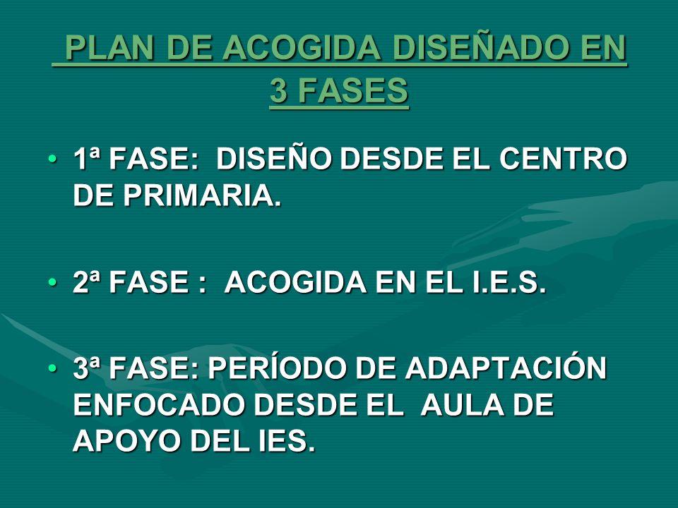 DIFICULTADES ESPECÍFICAS DEL TRÁNSITO DE PRIMARIA A LA ETAPA DE SECUNDARIA Figura diluida del tutor/a.Figura diluida del tutor/a.