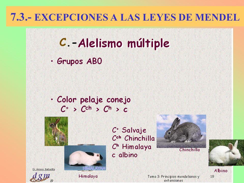 7.3.- EXCEPCIONES A LAS LEYES DE MENDEL C.-