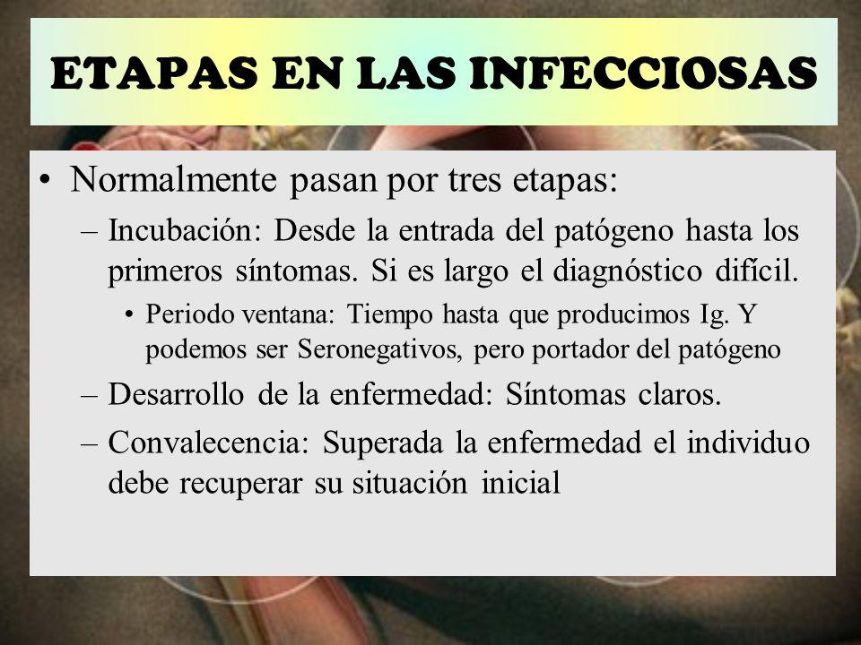 ETAPAS EN LAS INFECCIOSAS Normalmente pasan por tres etapas: –Incubación: Desde la entrada del patógeno hasta los primeros síntomas. Si es largo el di