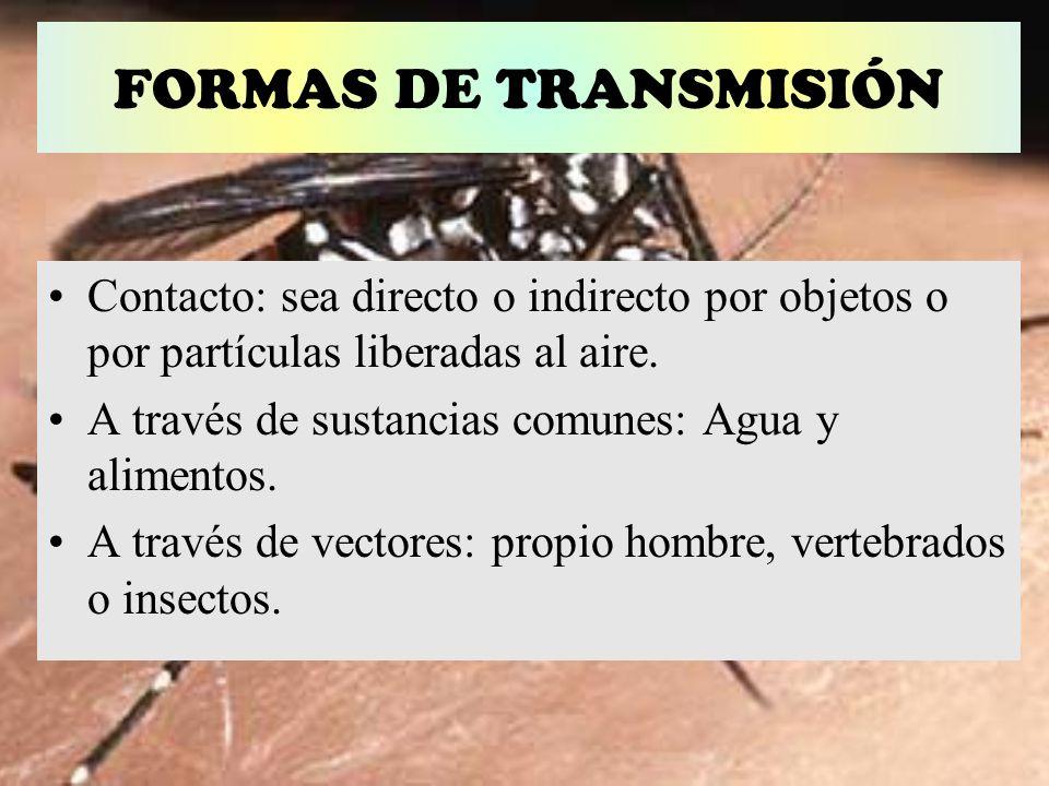 FORMAS DE TRANSMISIÓN Contacto: sea directo o indirecto por objetos o por partículas liberadas al aire. A través de sustancias comunes: Agua y aliment
