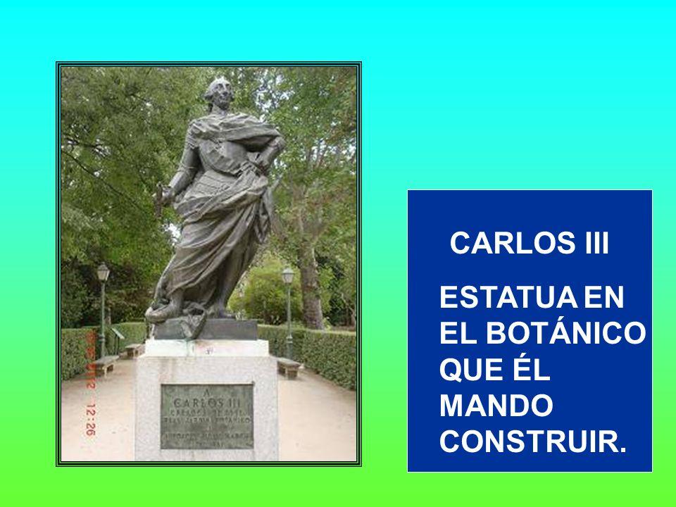 CARLOS III ESTATUA EN EL BOTÁNICO QUE ÉL MANDO CONSTRUIR.