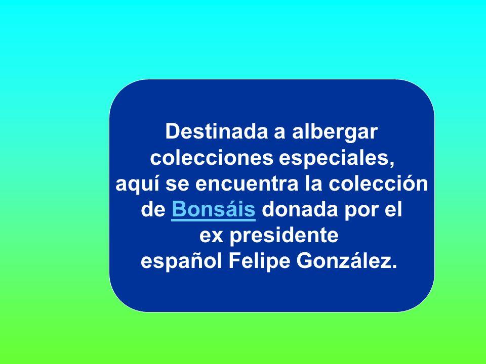 Destinada a albergar colecciones especiales, aquí se encuentra la colección de Bonsáis donada por el ex presidente español Felipe González.