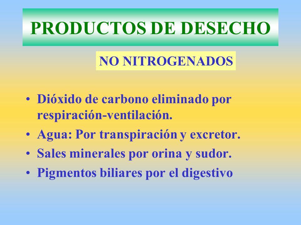 PRODUCTOS DE DESECHO Dióxido de carbono eliminado por respiración-ventilación. Agua: Por transpiración y excretor. Sales minerales por orina y sudor.