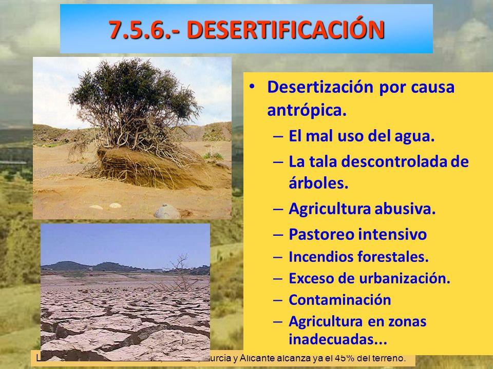 La desertización en Granada, Almería, Murcia y Alicante alcanza ya el 45% del terreno.