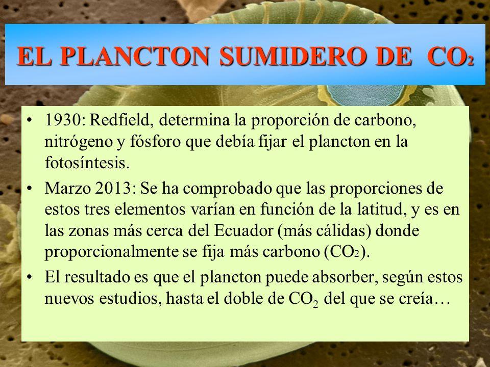 1930: Redfield, determina la proporción de carbono, nitrógeno y fósforo que debía fijar el plancton en la fotosíntesis. Marzo 2013: Se ha comprobado q