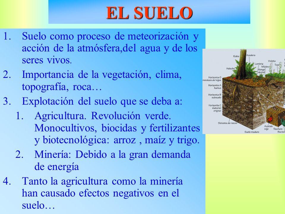 1.Suelo como proceso de meteorización y acción de la atmósfera,del agua y de los seres vivos. 2.Importancia de la vegetación, clima, topografía, roca…