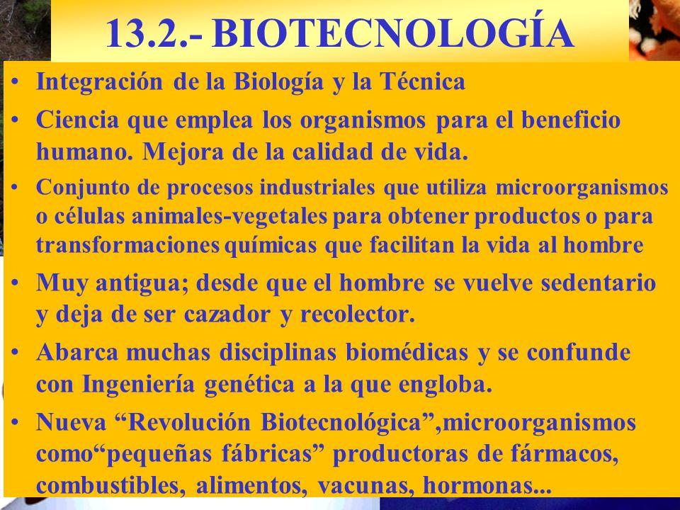 Integración de la Biología y la Técnica Ciencia que emplea los organismos para el beneficio humano. Mejora de la calidad de vida. Conjunto de procesos