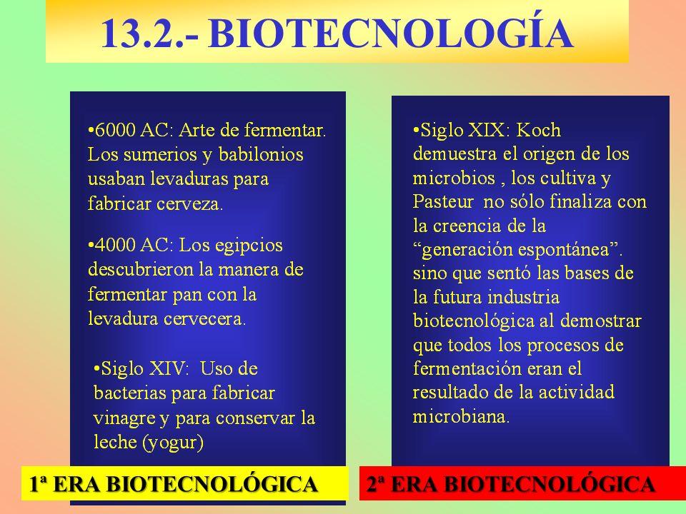 1ª ERA BIOTECNOLÓGICA 2ª ERA BIOTECNOLÓGICA