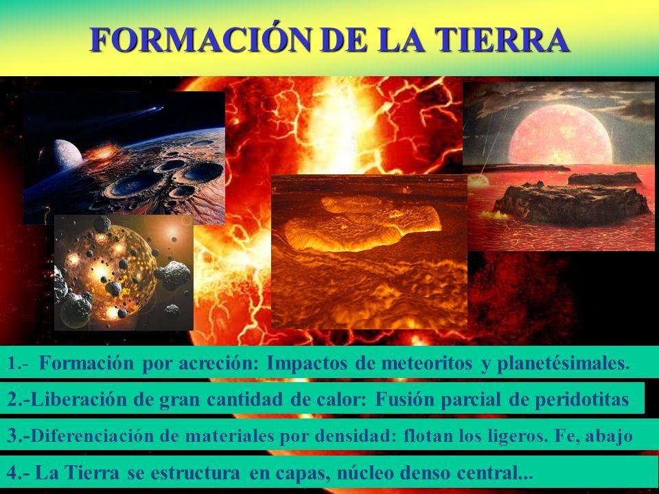 FORMACIÓN DE LA TIERRA 2.-Liberación de gran cantidad de calor: Fusión parcial de peridotitas 3.- Diferenciación de materiales por densidad: flotan lo