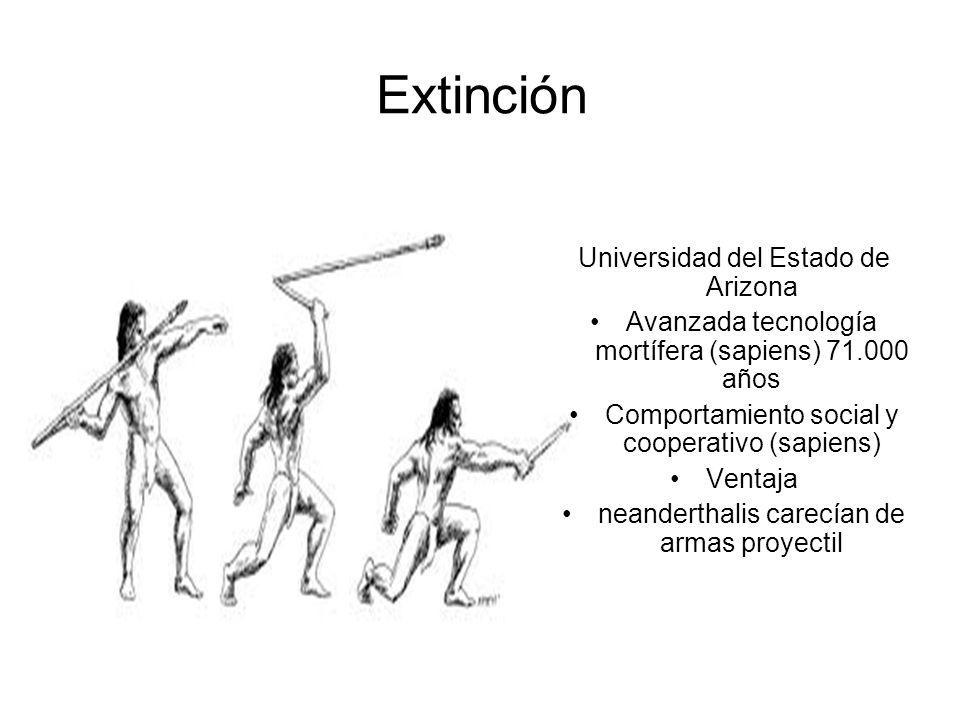 Extinción Universidad del Estado de Arizona Avanzada tecnología mortífera (sapiens) 71.000 años Comportamiento social y cooperativo (sapiens) Ventaja