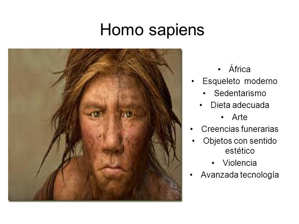 Homo sapiens África Esqueleto moderno Sedentarismo Dieta adecuada Arte Creencias funerarias Objetos con sentido estético Violencia Avanzada tecnología