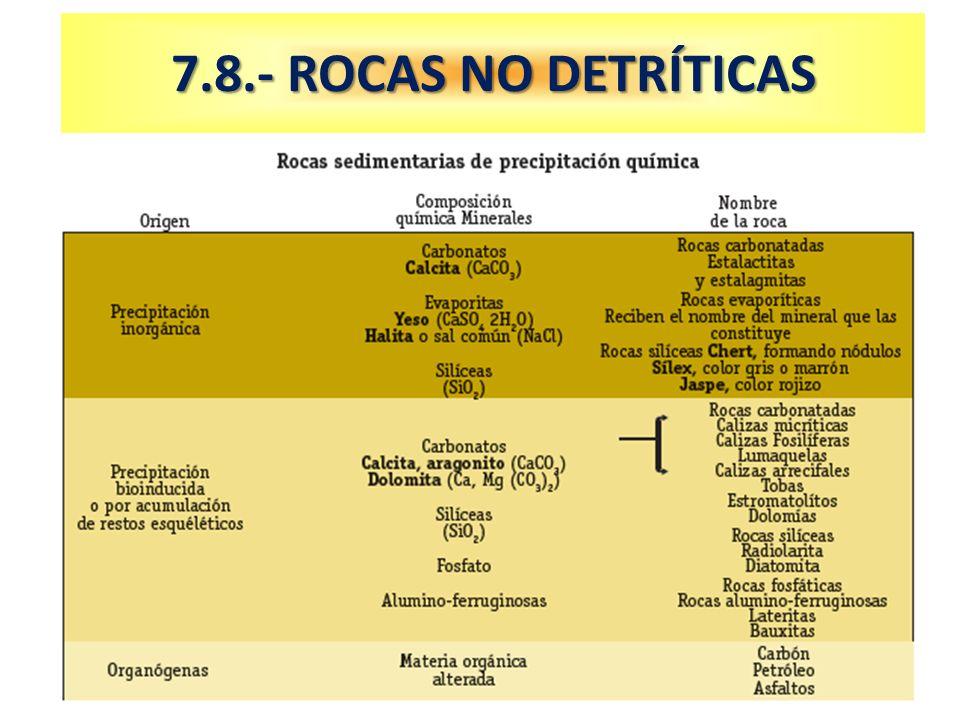 7.8.- ROCAS NO DETRÍTICAS