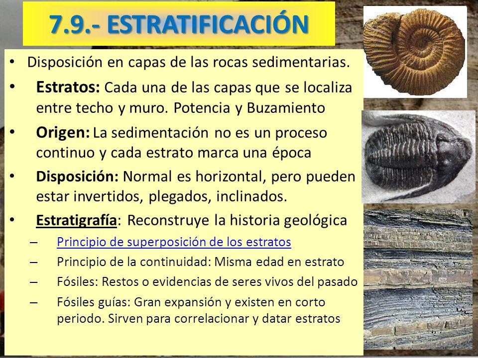 7.9.- ESTRATIFICACIÓN Disposición en capas de las rocas sedimentarias. Estratos: Cada una de las capas que se localiza entre techo y muro. Potencia y