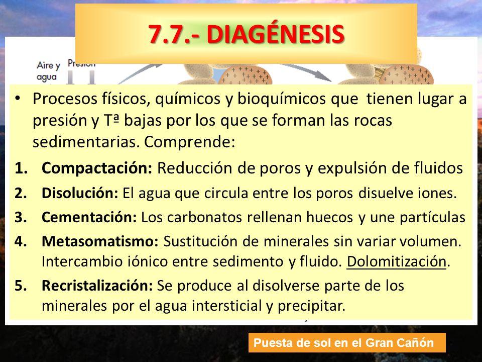7.7.- DIAGÉNESIS Procesos físicos, químicos y bioquímicos que tienen lugar a presión y Tª bajas por los que se forman las rocas sedimentarias. Compren