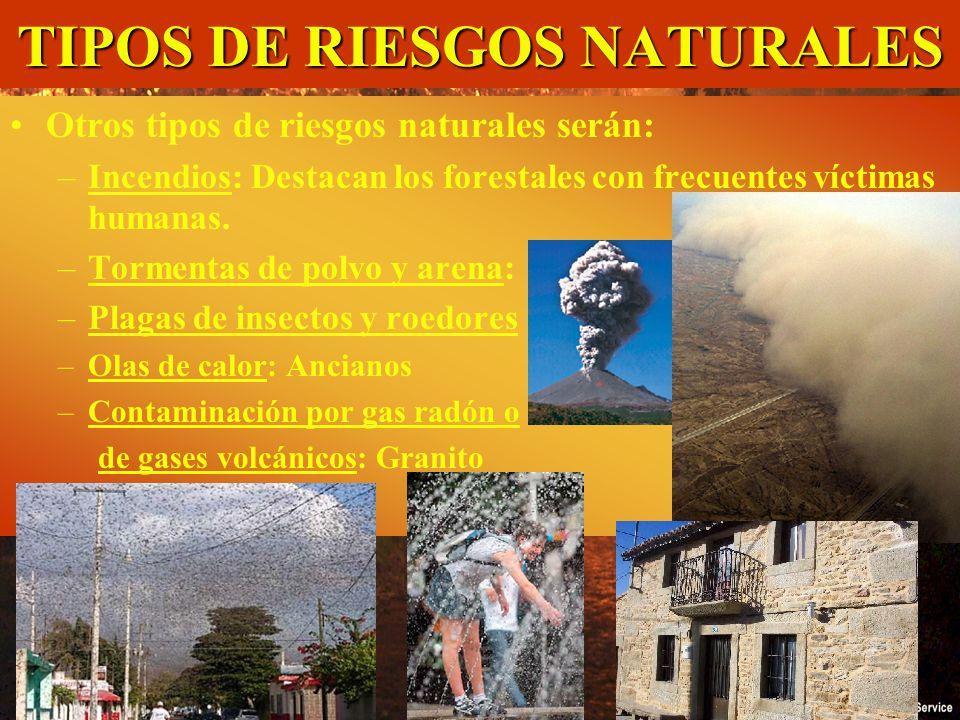 TIPOS DE RIESGOS NATURALES Regla del 30: Tª, Velocidad del viento, HR y Pendiente Otros tipos de riesgos naturales serán: –Incendios: Destacan los for