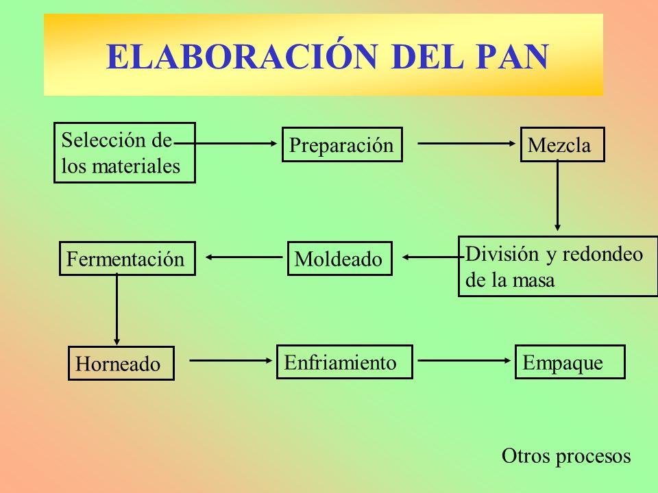 Mezcla Fermentación Selección de los materiales Preparación División y redondeo de la masa Moldeado Horneado EnfriamientoEmpaque Otros procesos ELABOR
