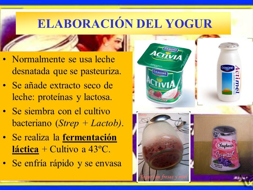 ELABORACIÓN DEL YOGUR Isaac Carasso Salónica Bulgaria, 1919 Barcelona Artesanal Farmacia Normalmente se usa leche desnatada que se pasteuriza. Se añad
