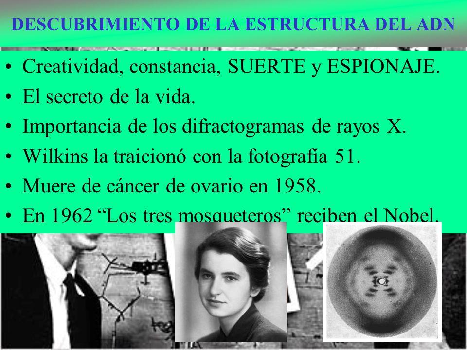 TÉCNICAS DE INGENIERÍA GENÉTICA SECUENCIACIÓN