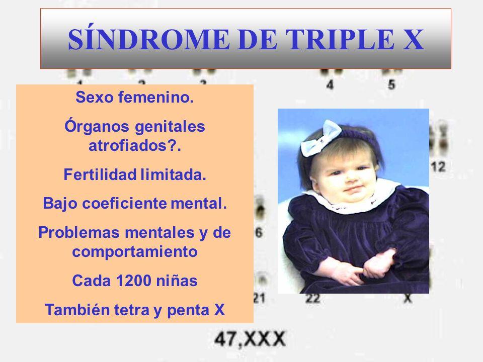 SÍNDROME DE TRIPLE X Sexo femenino. Órganos genitales atrofiados?. Fertilidad limitada. Bajo coeficiente mental. Problemas mentales y de comportamient