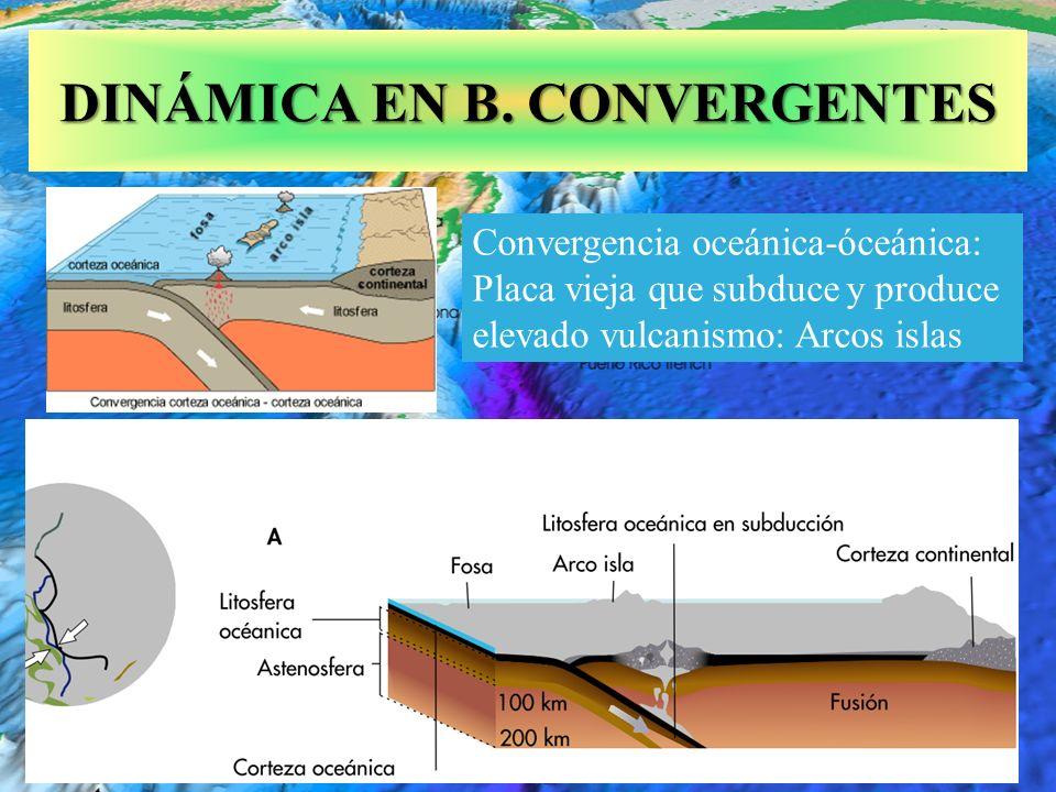 Fosa de Puerto Rico de 9,7 km de profundidad DINÁMICA EN B. CONVERGENTES Convergencia oceánica-óceánica: Placa vieja que subduce y produce elevado vul