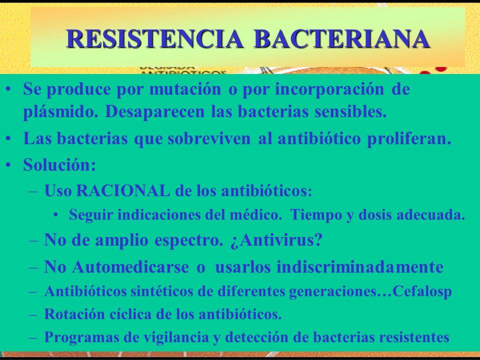 RESISTENCIA BACTERIANA Se produce por mutación o por incorporación de plásmido. Desaparecen las bacterias sensibles. Las bacterias que sobreviven al a