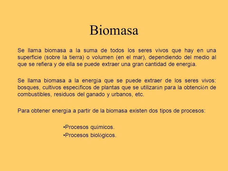 Biomasa Se llama biomasa a la suma de todos los seres vivos que hay en una superficie (sobre la tierra) o volumen (en el mar), dependiendo del medio a