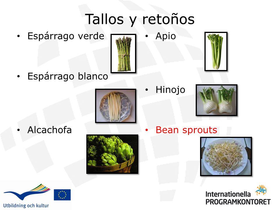 Tallos y retoños Espárrago verde Espárrago blanco Alcachofa Apio Hinojo Bean sprouts
