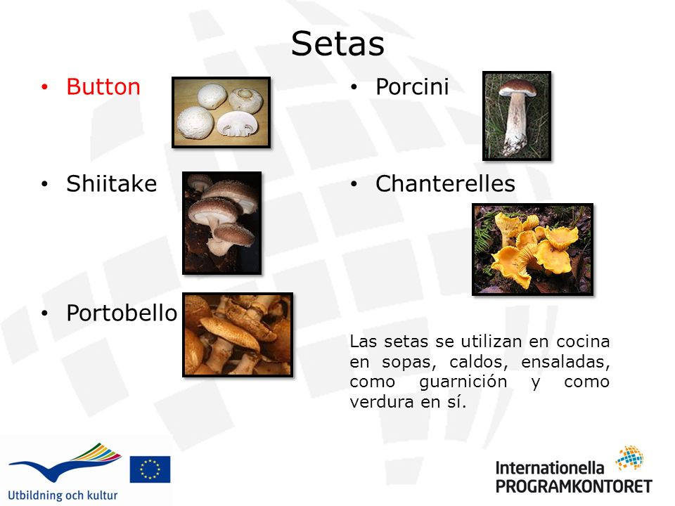 Setas Button Shiitake Portobello Porcini Chanterelles Las setas se utilizan en cocina en sopas, caldos, ensaladas, como guarnición y como verdura en sí.