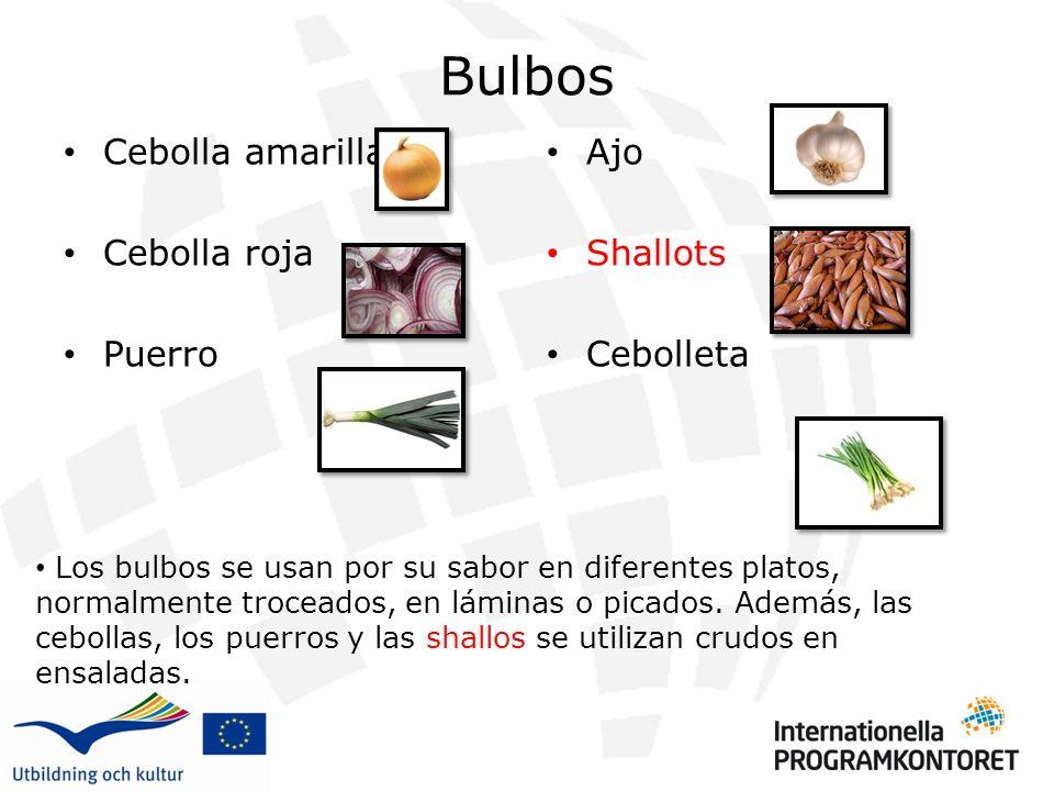 Bulbos Cebolla amarilla Cebolla roja Puerro Ajo Shallots Cebolleta Los bulbos se usan por su sabor en diferentes platos, normalmente troceados, en láminas o picados.