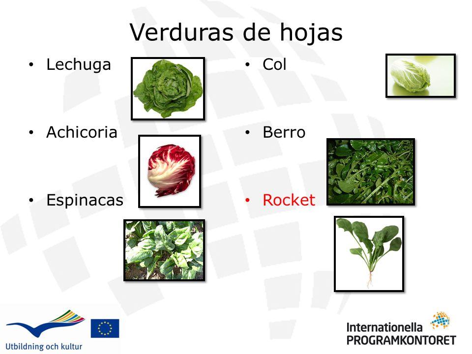 Verduras de hojas Lechuga Achicoria Espinacas Col Berro Rocket 1 2 3 4