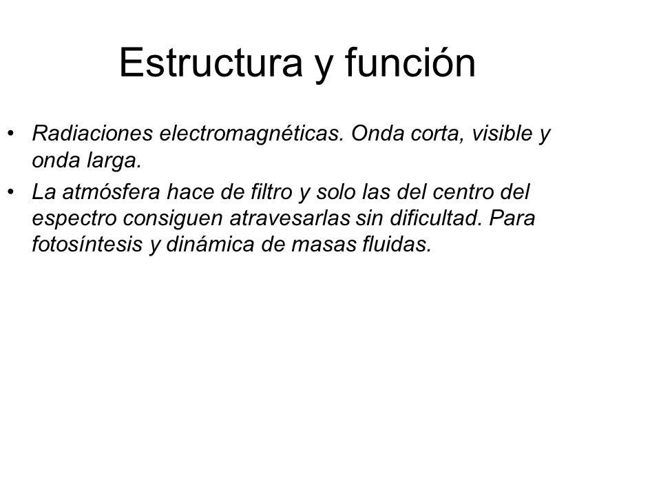 Estructura y función Radiaciones electromagnéticas. Onda corta, visible y onda larga. La atmósfera hace de filtro y solo las del centro del espectro c